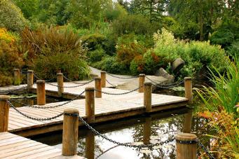 Teich Brunnen